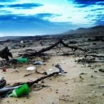 ecologiquement_plage